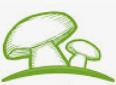 Champignonnière circulaire
